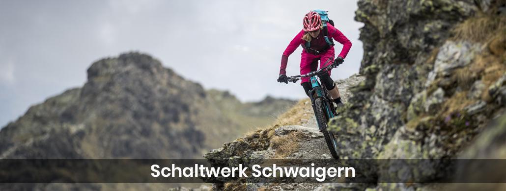 Fahrrad in Bad Wimpfen - Schaltwerk-Schwaigern: E-Bike, Kastenrad Reparatur & Service