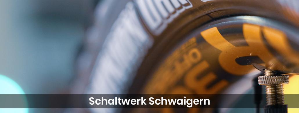 Fahrrad Eschelbronn - Schaltwerk-Schwaigern: E-Bike, Tribike Reparatur & Service