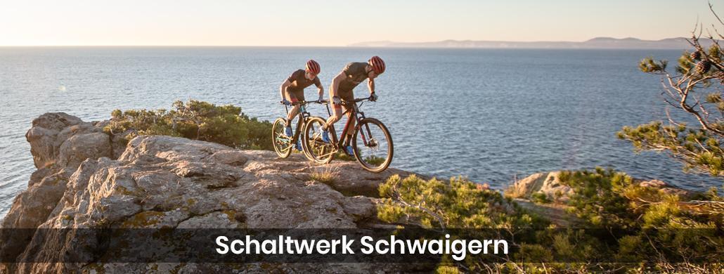Fahrrad für Kieselbronn - Schaltwerk-Schwaigern: E-Bike, Tribike Reparatur & Service