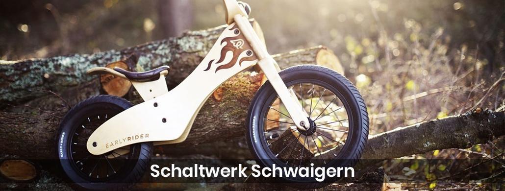 Fahrrad Waibstadt - Schaltwerk-Schwaigern: E-Bike, Pedelec Reparatur & Service