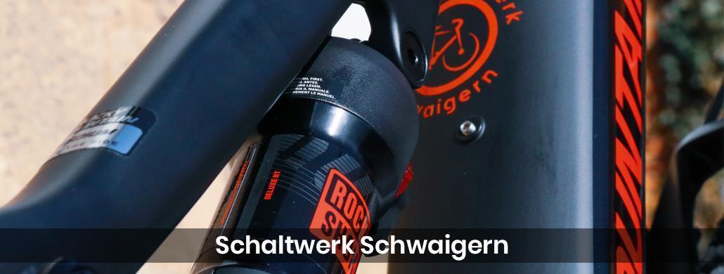 Fahrrad für Neckarsulm - Schaltwerk-Schwaigern: E-Bike, Tribike Reparatur & Service