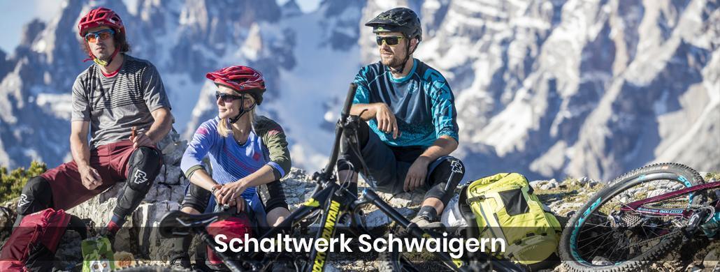 Fahrrad Schefflenz - Schaltwerk-Schwaigern: E-Bike, Kastenrad Reparatur & Service